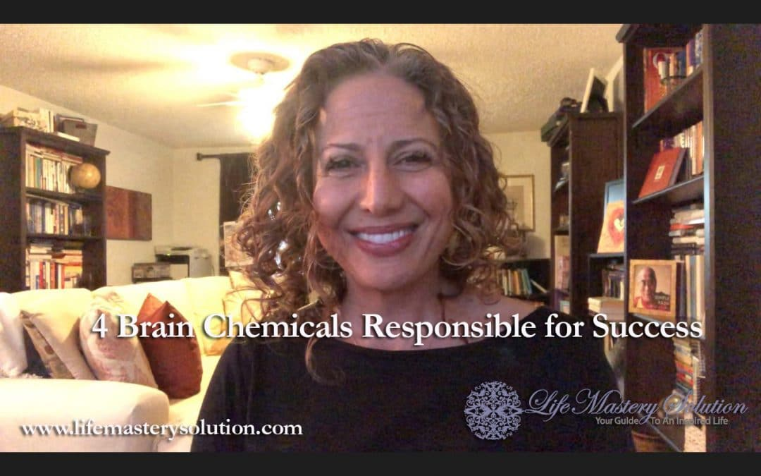 The 4 Brain Chemicals Responsible for Success